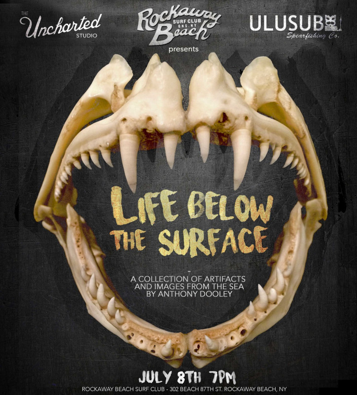Life Below The Surface Anthony Dooley Rockaway Beach Queens therockawaysny